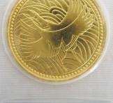 皇太子殿下御成婚記念 5万円 金貨幣